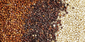 Red, Black & White Quinoa